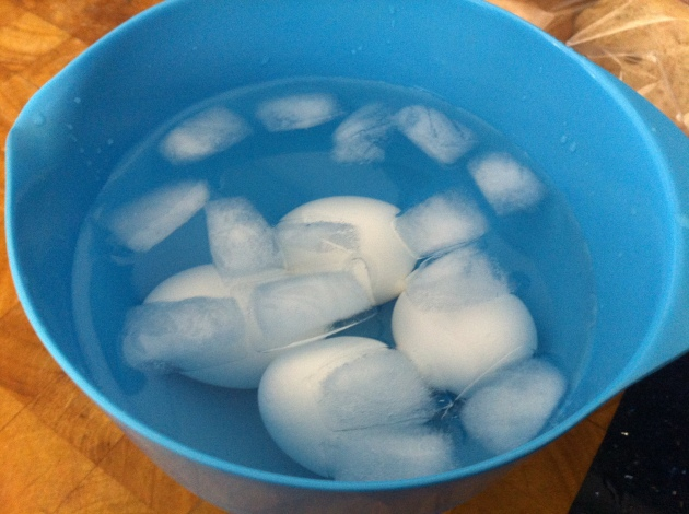 Eggs in an Ice Bath | kitchenoperas.com
