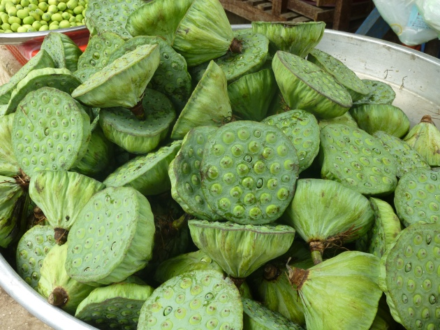 Lotus pods - Vietnam | kitchenoperas.com